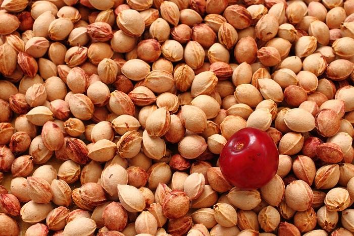 Kirschkerne: Auch diese Art von Füllung wird verwendet