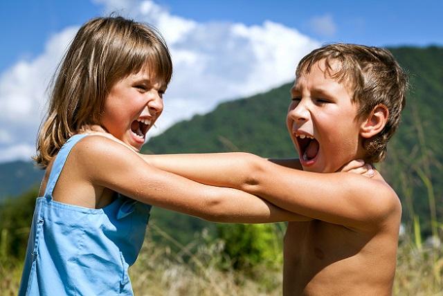 Wie schon erwähnt, sind die Ursachen für Verhaltensstörungen so vielfältig wie ihre Symptome. (#01)