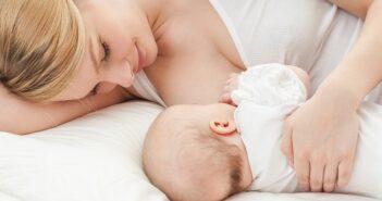 Die Ernährung des Kindes in den ersten 24 Monaten:Von der Milch zum Käsebrot