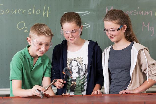 Die Fachgruppe Chemieunterricht der Gesellschaft Deutscher Chemiker hat es sich ebenfalls zum Ziel gesetzt, den Chemieunterricht ansprechender, verständlicher und vor allem für die Schüler attraktiver zu gestalten. (#01)