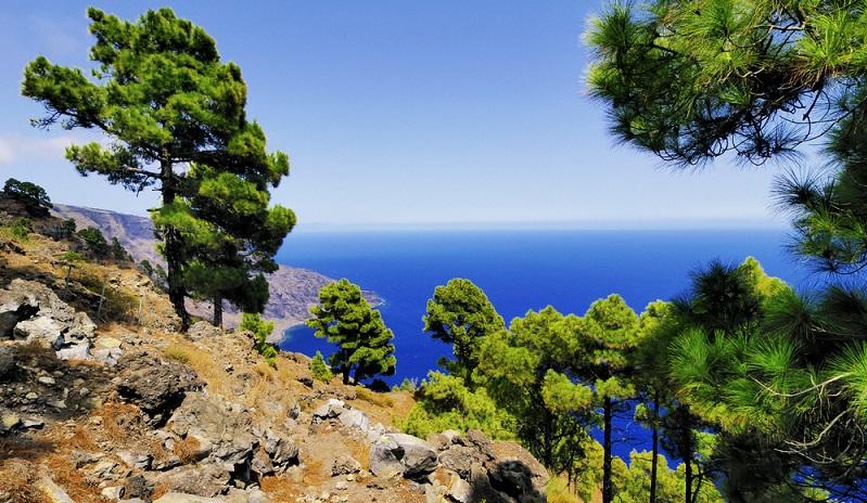 El Hierro bietet sich vor allem für Taucher, Wanderer und Mountainbiker an. Diese Insel ist das passende Reiseziel für Naturliebhaber und Menschen, die Ruhe suchen. (#01)